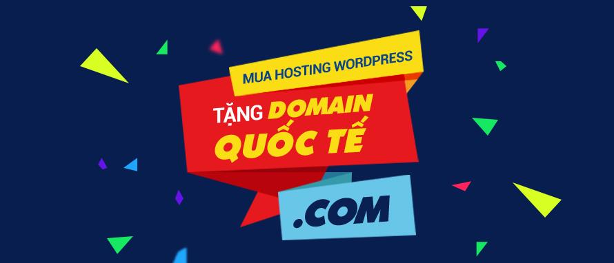 Mua hosting tặng tên miền .COM
