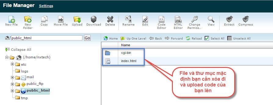 Tại mục Files, vào File Manager để quản lý file, up website.