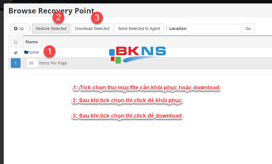 Sau khi chọn thư mục cần khôi phục thì bạn có thể chọn 1 trong 2 chức năng là khôi phục hoặc download.