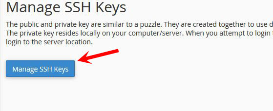 Click Manage SSH Keys