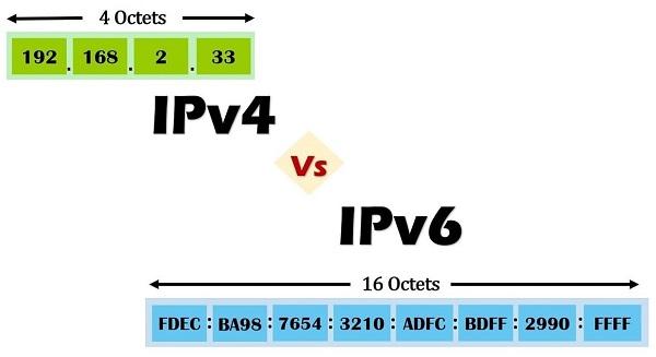 Địa chỉ IP có 2 phiên bản là IPv4 và IPv6