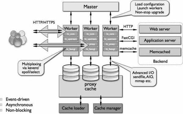 NGINX hoạt động theo kiến trúc Asynchronous và Event Driven