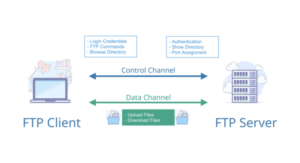 Server (máy chủ) và Client (máy khách) là hai điều kiện hoạt động của FTP