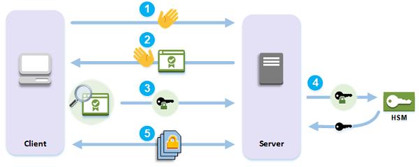 SSl là một tập hợp những thủ tục được chuẩn hóa