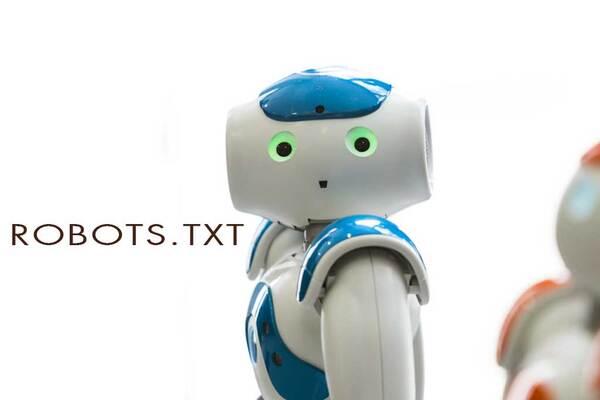 File robots.txt thiết lập bộ chỉ dẫn cho Search Engine Bots chỉ truy cập vào những trang quan trọng trên website