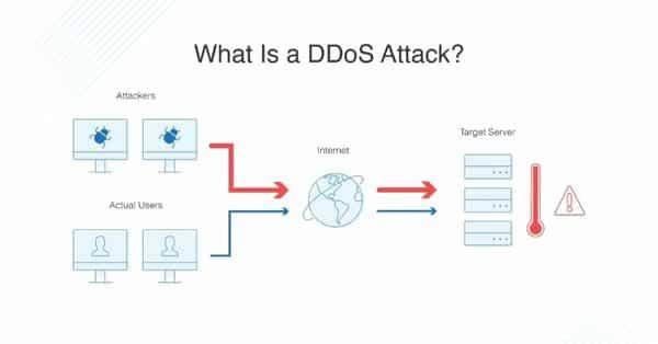 Làm sao để tránh bị tấn công DoS và DDoS?