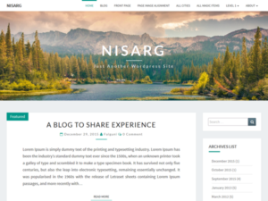 Nisarg là một trong những Theme WordPress miễn phí khá đẹp mắt