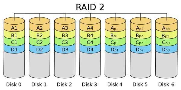 Dữ liệu Raid 2 được Strip ở cấp độ bit, phân chia tại nhiều ổ đĩa dữ liệu và ổ đĩa dự phòng
