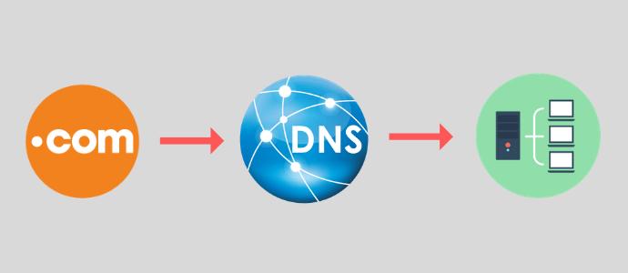 Sử dụng địa chỉ DNS như thế nào?