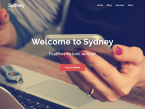 Sydney là một trong những Theme có khả năng tùy biến cao