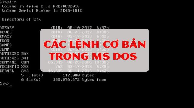 Các lệnh cơ bản trong Ms DOS