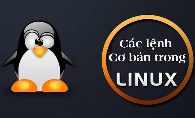 Các lệnh cơ bản trong Linux
