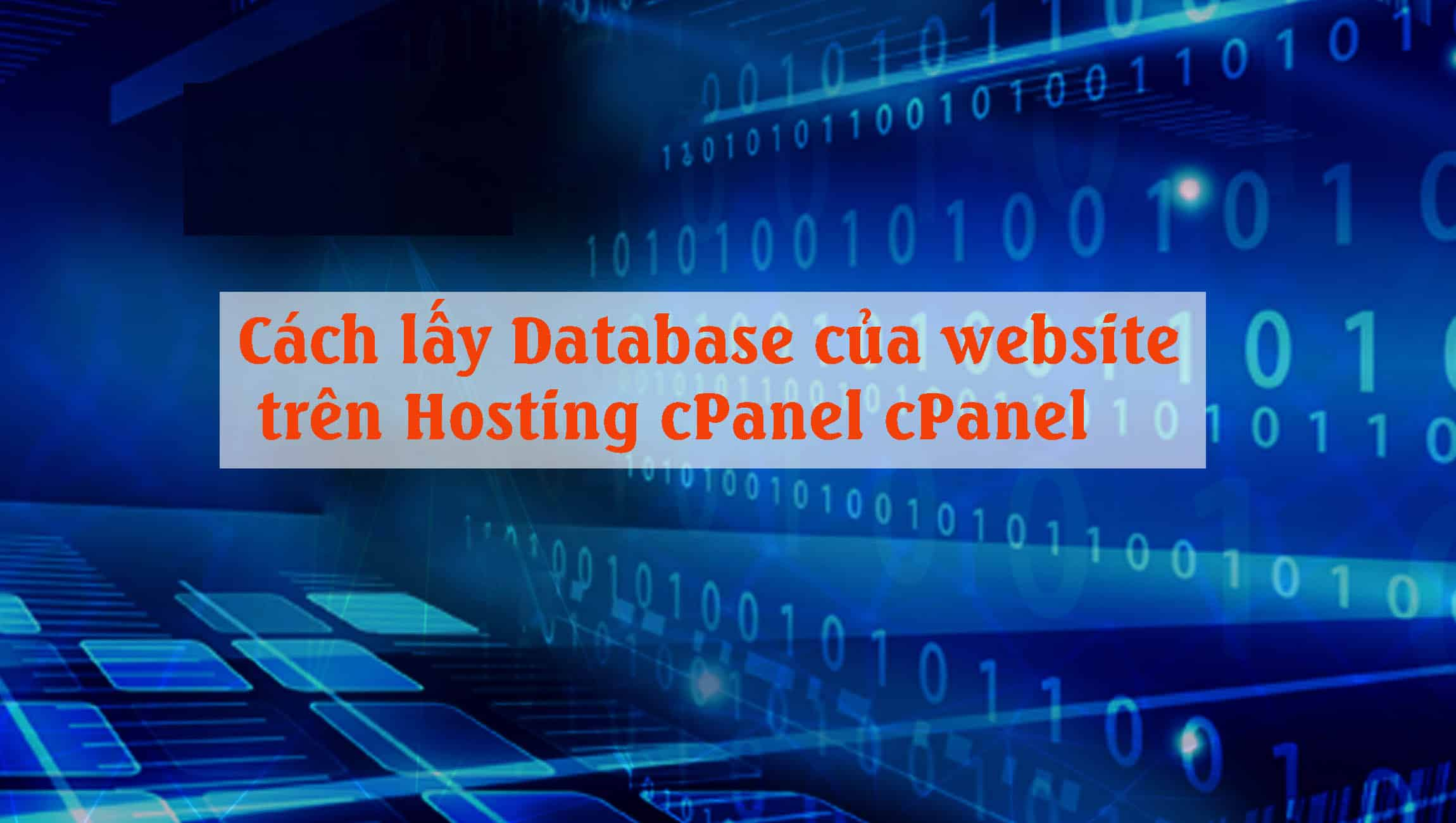 Cách lấy Database của website