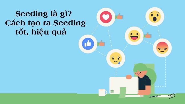 Seeding là gì?