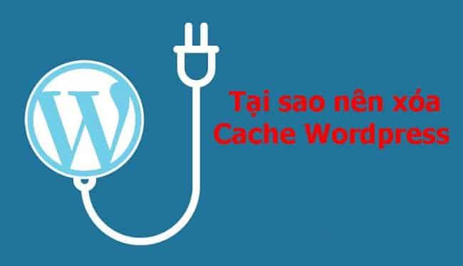 Tại sao nên xóa Cache WordPress?