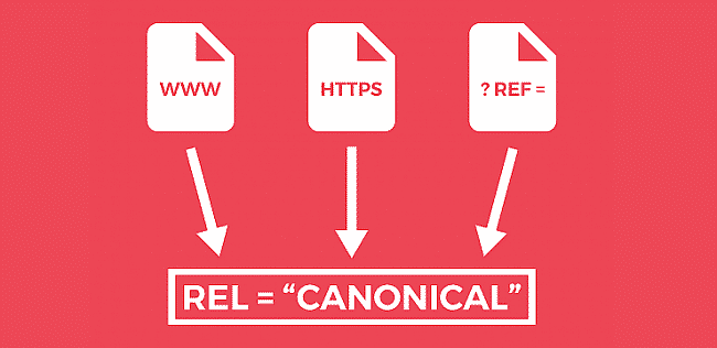 Những lưu ý khi sử dụng Canonical Url